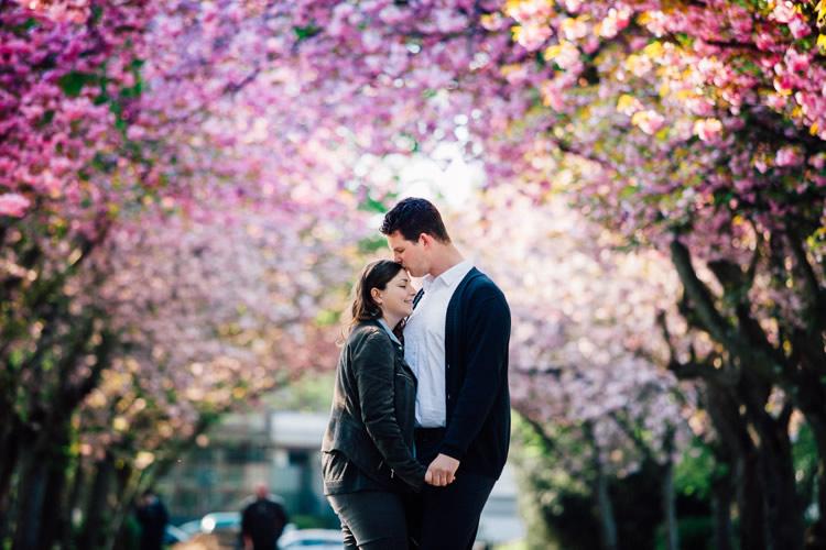 kirschblüten paarfotos